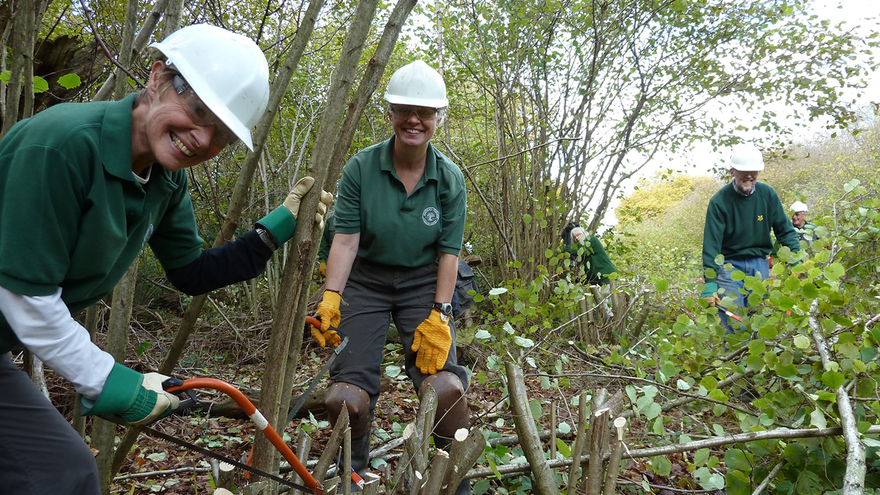 Volunteers coppicing hazel. Two women wearing white safety hats and goggles smile at the camera, in an outdoors green setting
