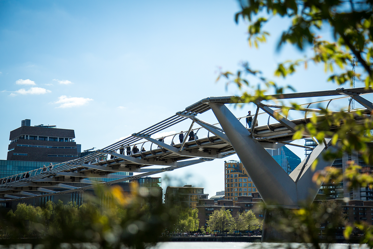 The Millennium Bridge, with trees in the foreground